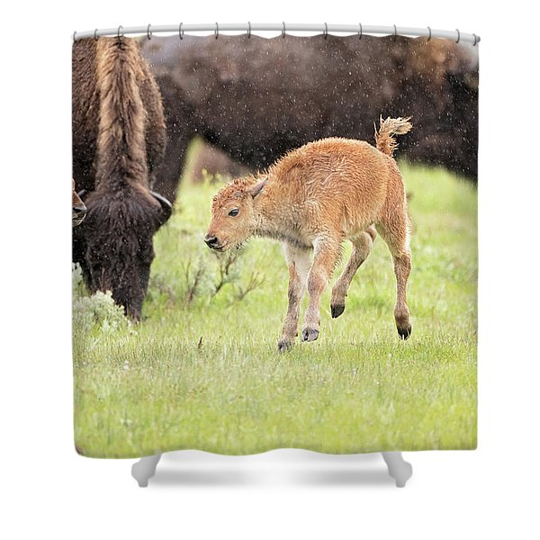 Dance In The Rain Shower Curtain