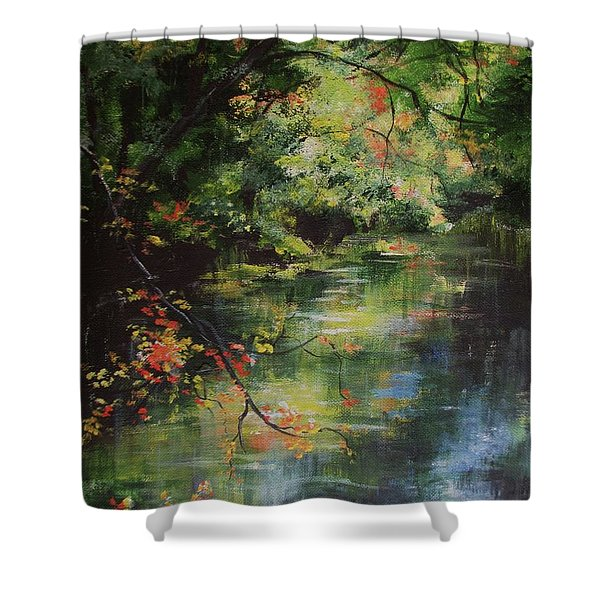Dance Of Color And Light Shower Curtain