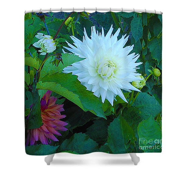 Dance Of Life Shower Curtain