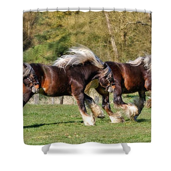Dance Of The Gypsy Shower Curtain