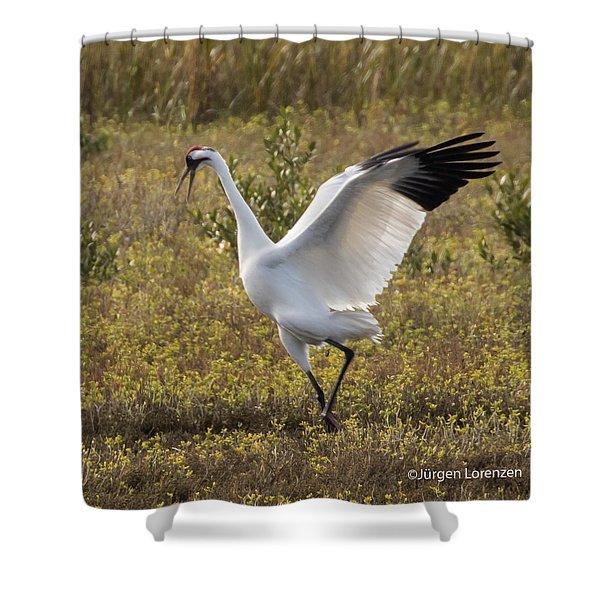 Dancing Crane Shower Curtain