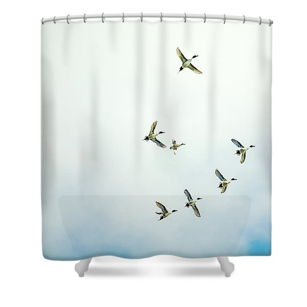 Dancing In The Air Shower Curtain