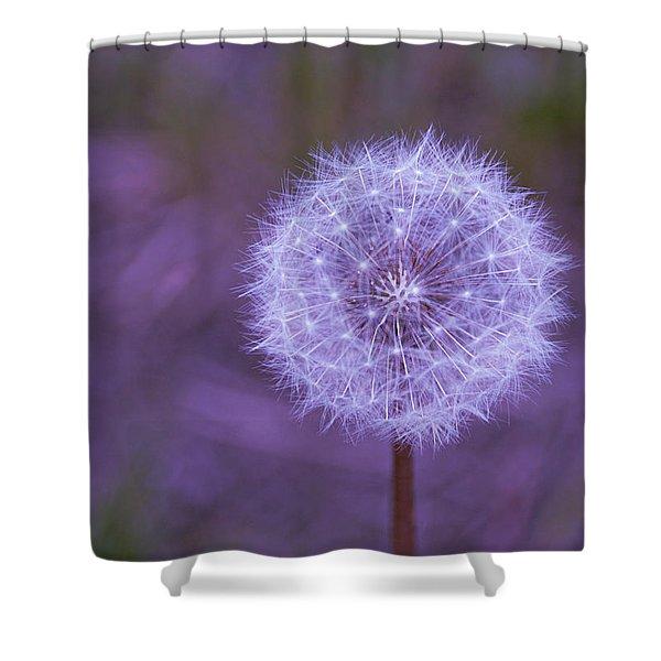 Dandelion Geometry Shower Curtain