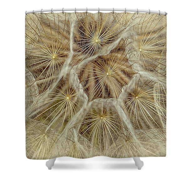Dandelion Particles Shower Curtain
