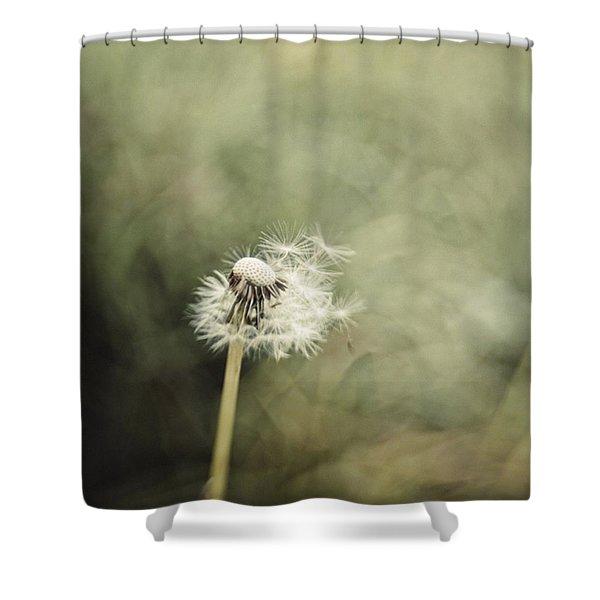 Dandelion  #lensbaby #composerpro Shower Curtain