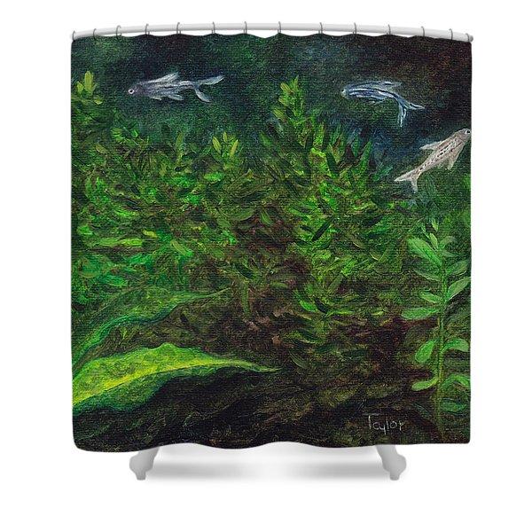 Danios Shower Curtain