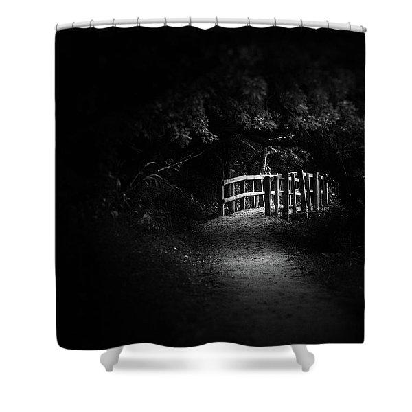 Dark Footbridge Shower Curtain