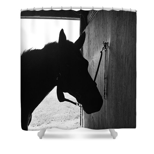 Dark Horse Shower Curtain