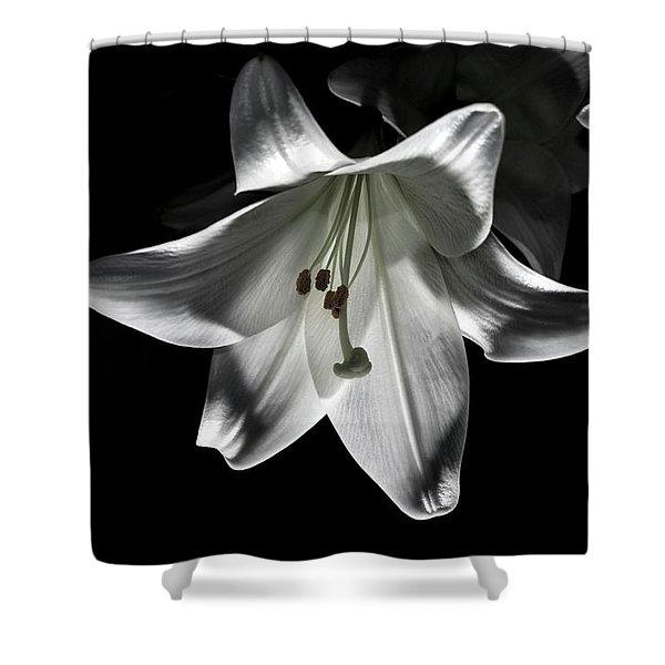 Dark Lilly Shower Curtain