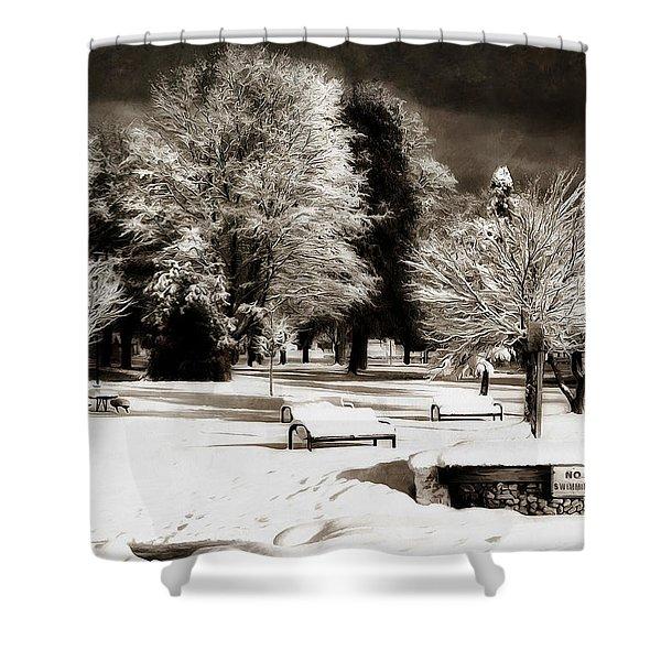 Dark Skies And Winter Park Shower Curtain
