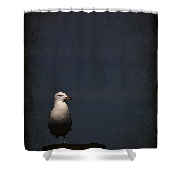 Darkness Falls Shower Curtain