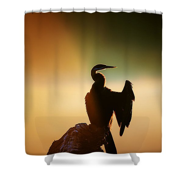 Darter Bird With Misty Sunrise Shower Curtain