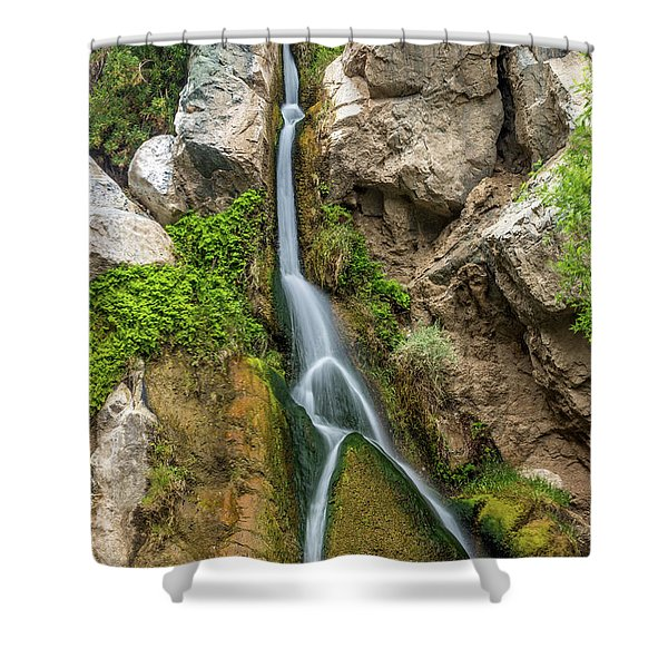 Darwin Falls Death Valley Shower Curtain