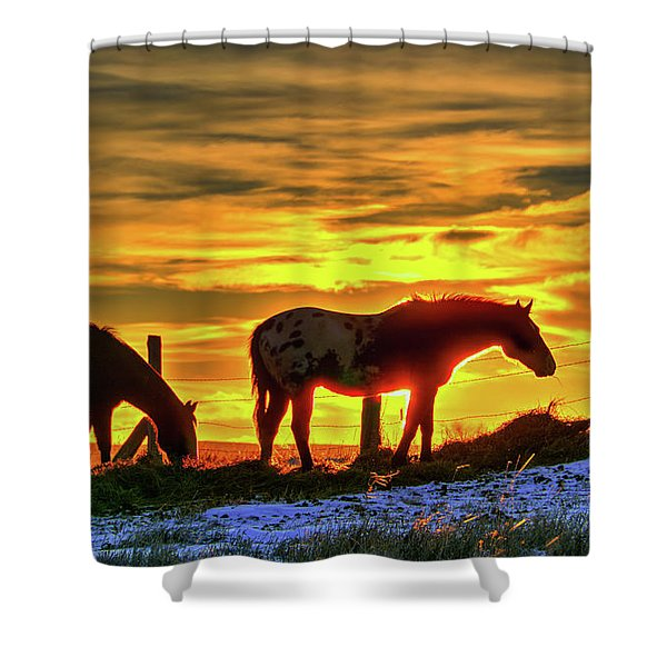 Dawn Horses Shower Curtain