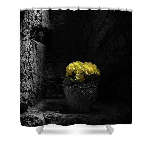Daylight Delight Shower Curtain