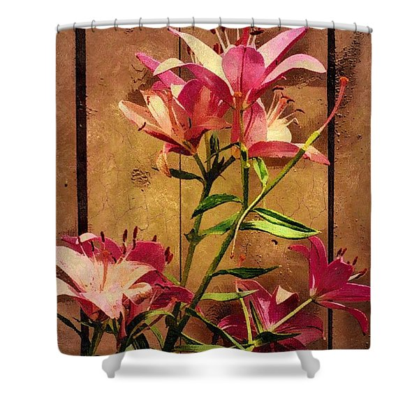 Dayliliys In  Guilford , Conn Shower Curtain