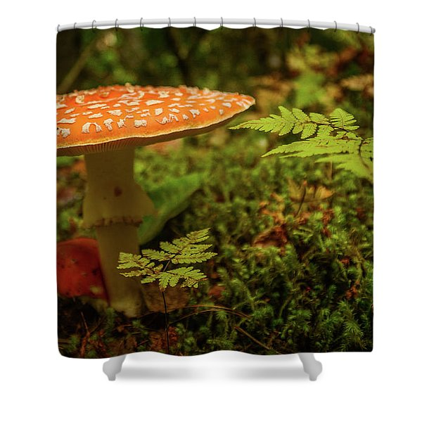 Death Cap Shower Curtain