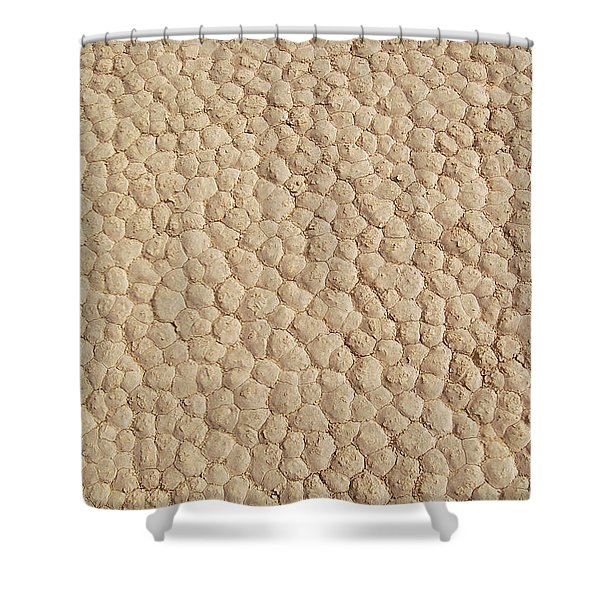 Death Valley Mud Shower Curtain