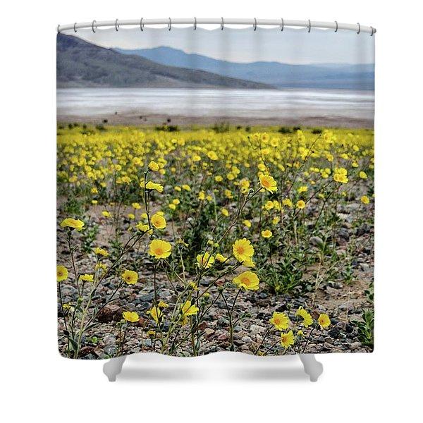 Death Valley Super Bloom Shower Curtain