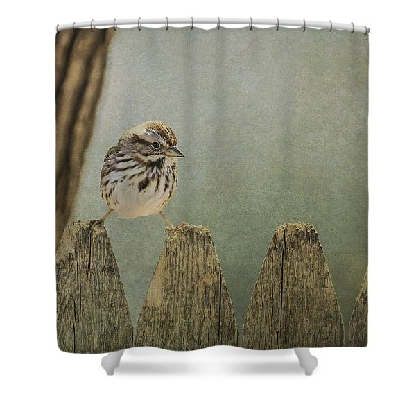 Decisions Shower Curtain