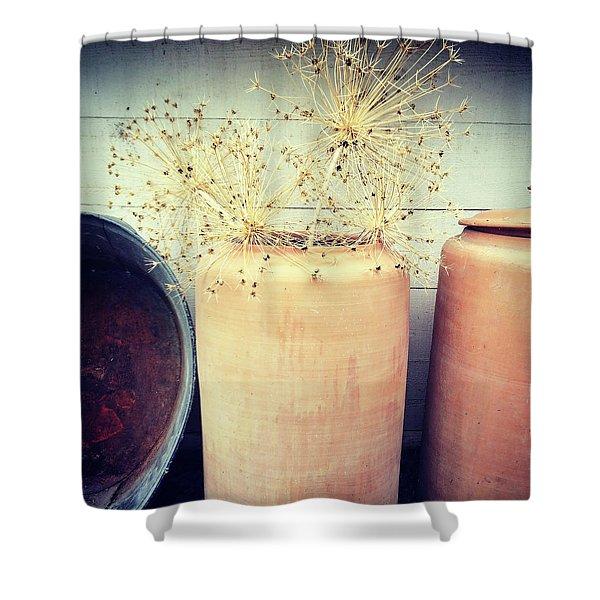 Decorative Allium Plants In Clay Vase Shower Curtain