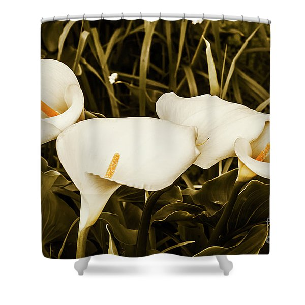Decorative Spring Garden Shower Curtain
