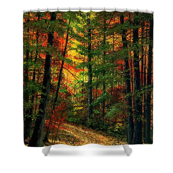 Deep In The Forest Shower Curtain