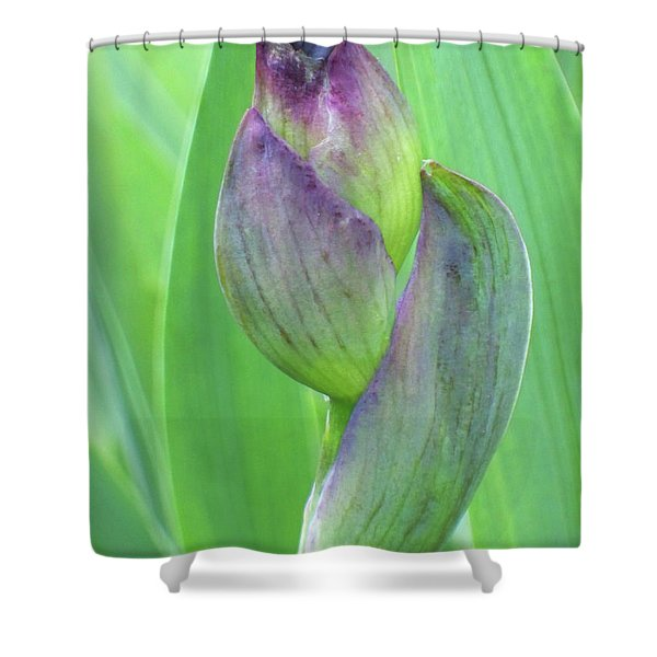 Shower Curtain featuring the photograph Deep Purple Promise by Cris Fulton