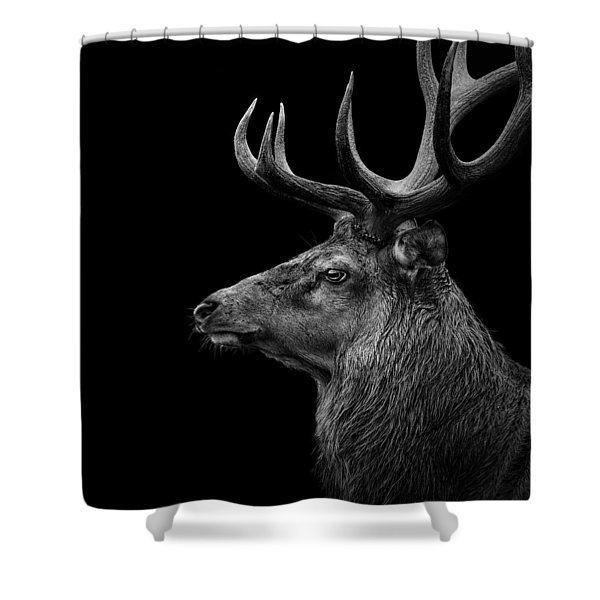 Deer In Black And White Shower Curtain