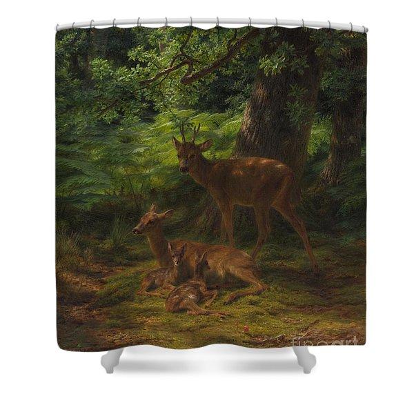 Deer In Repose Shower Curtain