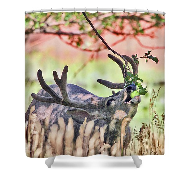 Deer In The Orchard Shower Curtain
