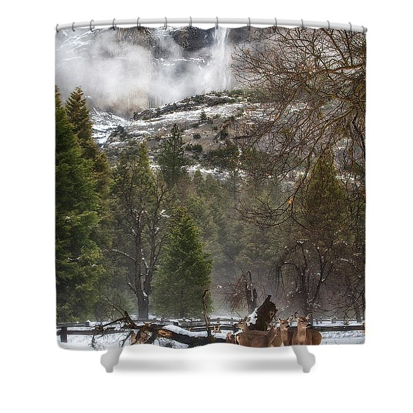 Deer Of Winter Shower Curtain