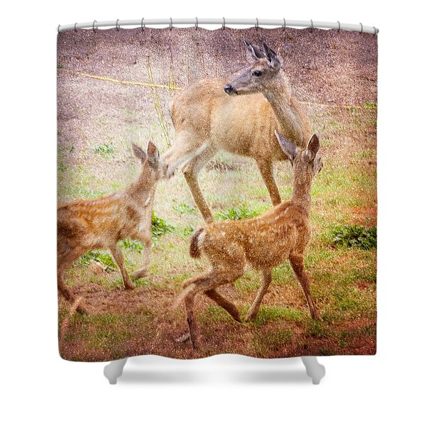 Deer On Vancouver Island Shower Curtain
