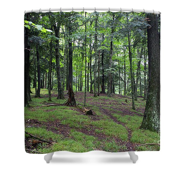 Deer Path Shower Curtain