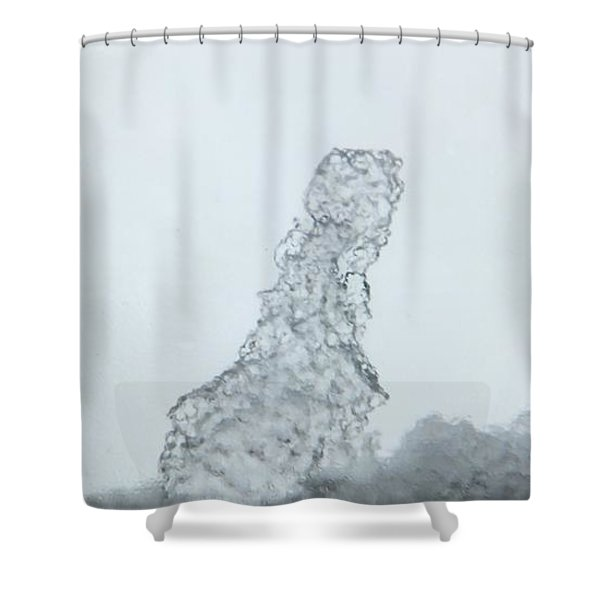 Degivrage Shower Curtain