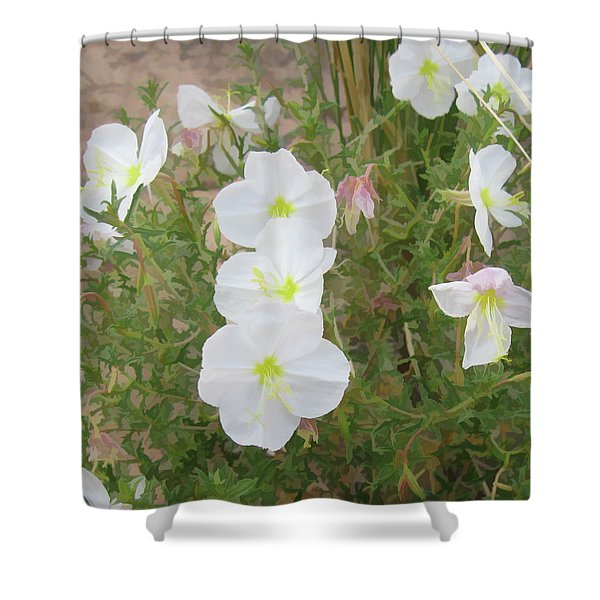 Delicate Desert Bloom - Death Valley Shower Curtain