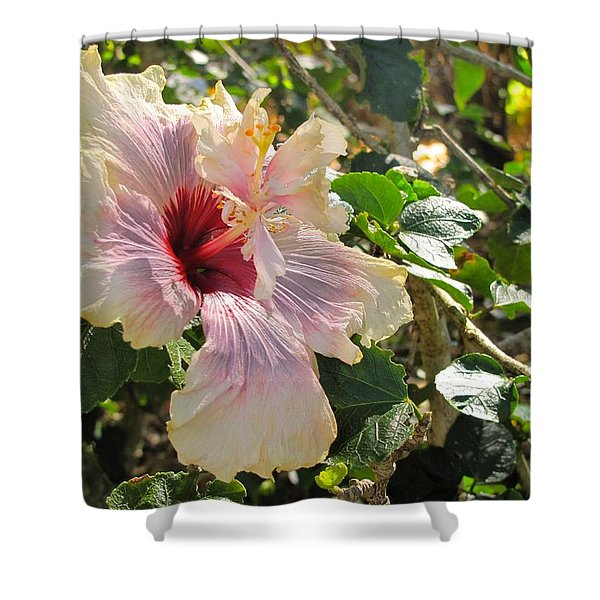Delicate Expression Shower Curtain