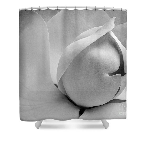 Delicate Flower Shower Curtain