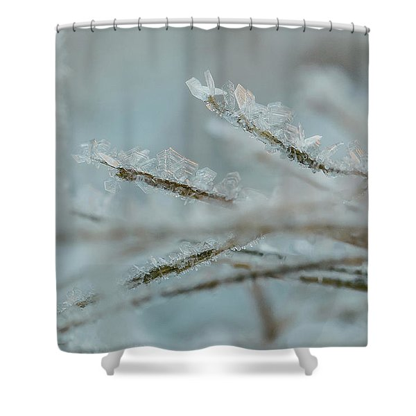 Delicate Morning Frost  Shower Curtain
