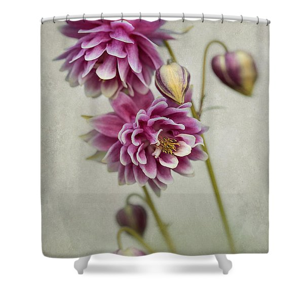 Delicate Pink Columbine Shower Curtain