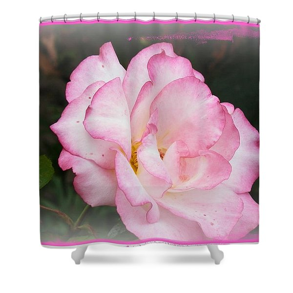 Delicate Pink Petals Shower Curtain