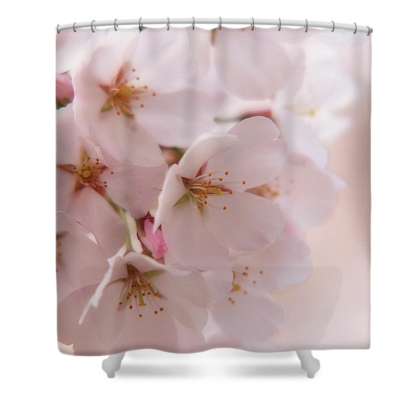 Delicate Spring Blooms Shower Curtain
