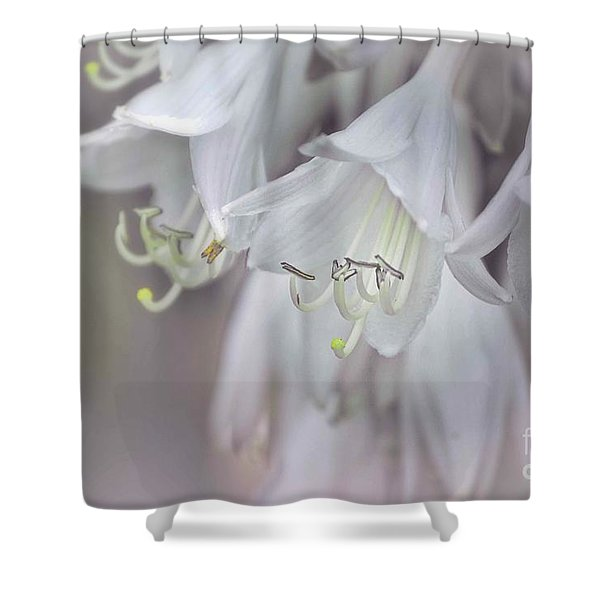 Delicate White Flowers Shower Curtain