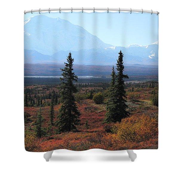 Denali From Near Wonder Lake Shower Curtain