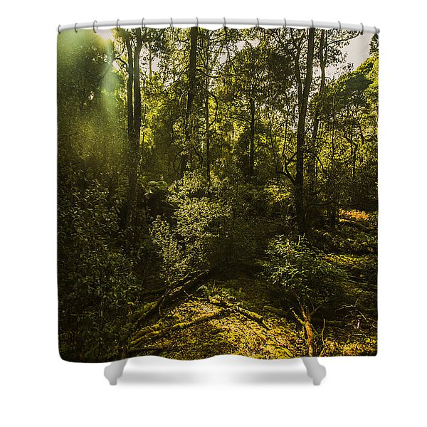 Dense Green Tropical Forest Shower Curtain