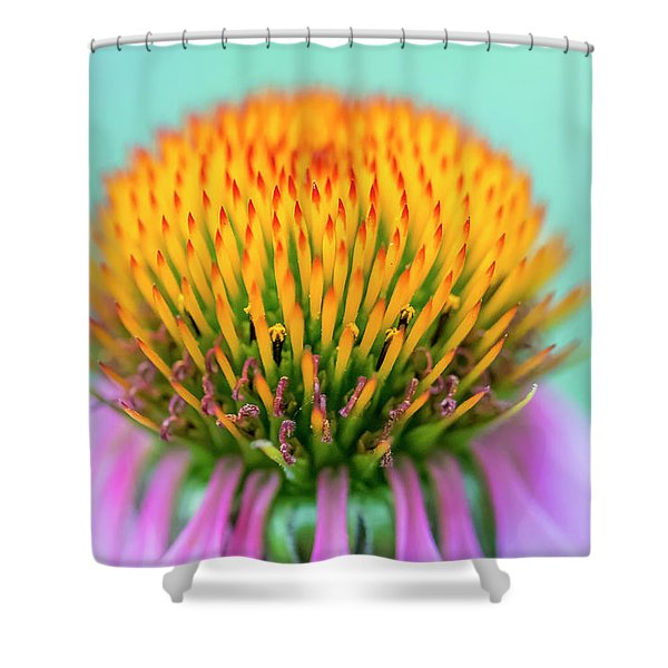 Depth Of Field Shower Curtain