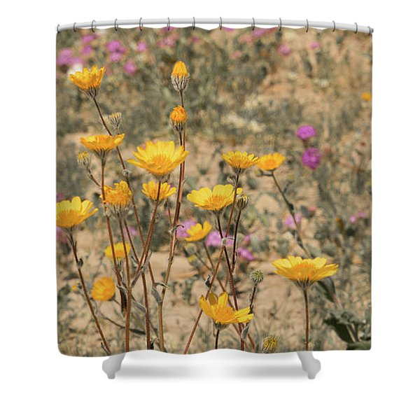 Shower Curtain featuring the photograph Desert Daisy by Michael Hope
