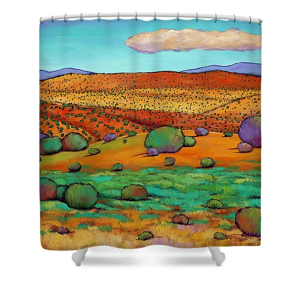Desert Day Shower Curtain