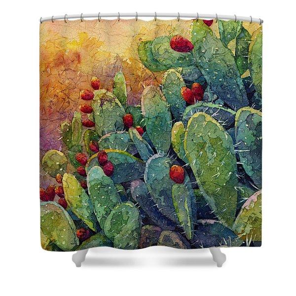 Desert Gems 2 Shower Curtain