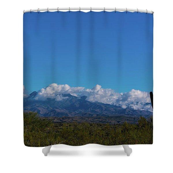 Desert Inversion Cactus Shower Curtain
